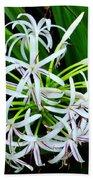 Samoan Spider Lily Beach Towel