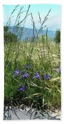 San Bernardino Mountains - Southern California 5 Beach Towel