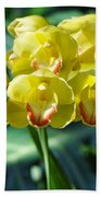 San Diego Yellow Orchids Beach Towel