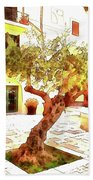 San Felice Circeo Olive Tree In The Square Beach Towel