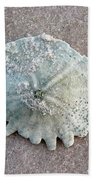 Sand Dollar Beach Towel