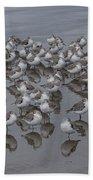 Sanderlings On The Shore Beach Towel