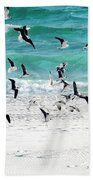 Sandestin Seagulls B Beach Towel