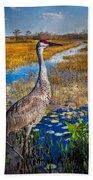 Sandhill Crane In The Glades Beach Towel