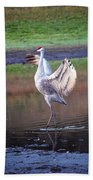 Sandhill Crane Painted Beach Towel