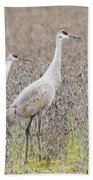 Sandhill Crane Stroll, Antigone Canadensis Beach Towel