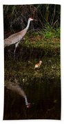 Sandhill Cranes And Chicks Beach Towel