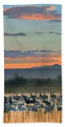 Sandhill Cranes And Snow Geese Beach Towel