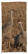 Sandhill Cranes On Watch Beach Towel