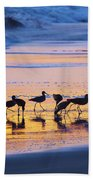 Sandpipers In A Golden Pool Of Light Beach Sheet