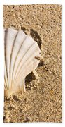 Sandy Shell Beach Towel by Jorgo Photography - Wall Art Gallery