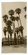 Santa Barbara Palms Beach Towel