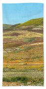 Santa Ynez Mountains Wildflowers Beach Towel