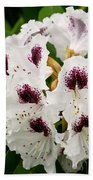 Sappho Rhododendron Beach Towel