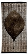 Sassafras Leaves With Wicker Beach Towel