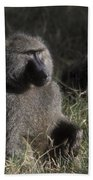 Savannah Olive Baboon  Beach Towel