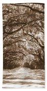 Savannah Sepia - Glorious Oaks Beach Towel