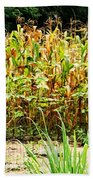 Scarecrow II Beach Towel