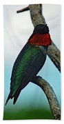 Scarlet Gorget - Ruby-throated Hummingbird Beach Towel