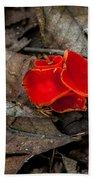 Scarlet Underfoot Beach Towel