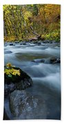 Scattered Along The Way Beach Towel