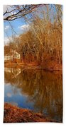 Scene In The Forest - Allaire State Park Beach Sheet