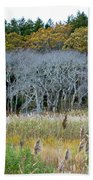Scorton Creek Treeline Beach Towel