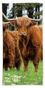Scottish Highland Cows Beach Towel