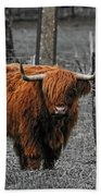 Scottish Highlander Beach Towel