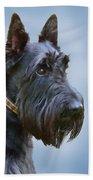 Scottish Terrier Dog Beach Towel