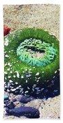 Sea Anemone Beach Towel