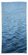 Sea Birds Beach Towel