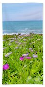 Sea Daisy Trail Beach Towel