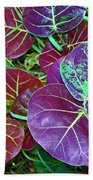 Sea Grape  Beach Towel