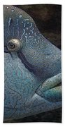 Sea Life 19 Beach Towel