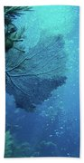 Sea Life- An Answer Of Peace Beach Towel