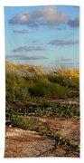 Sea Oats Along The Beach Beach Towel