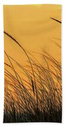 Sea Oats At Dusk Beach Towel