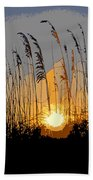 Sea Oats At Sunset Beach Towel