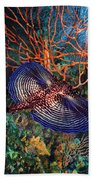 Sea Robin The Flying Gurnard Beach Towel