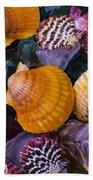 Sea Shells And Sea Glass Beach Towel