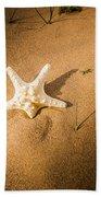 Sea Star Scene Beach Towel