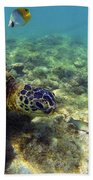 Sea Turtle #1 Beach Towel