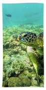 Sea Turtle #2 Beach Towel