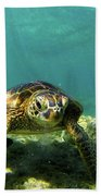 Sea Turtle #3 Beach Towel