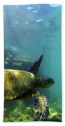 Sea Turtle #5 Beach Sheet