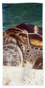 Sea Turtle Resting Beach Towel