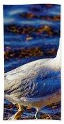 Seagull 1 Beach Towel
