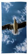Seagull Flying  Beach Towel