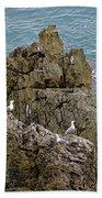 Seagull Island On Cefalu In Sicily  Beach Towel